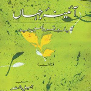 A'AENA-E-JAHAN (3) - NOVELET - آئینہ جہاں : کلیاتِ قراۃالعین حیدر